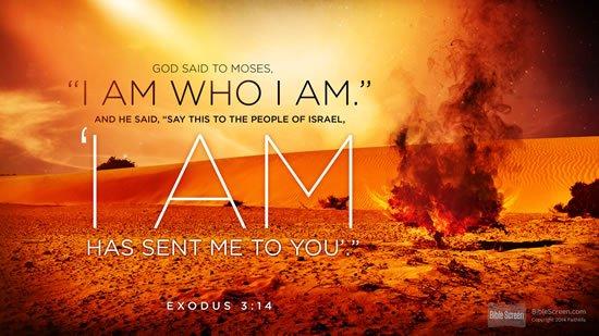 Exodus 3. 14