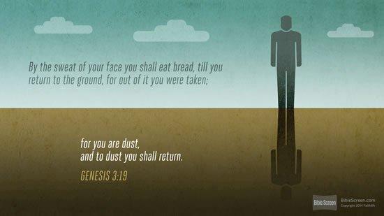 Genesis 3. 19