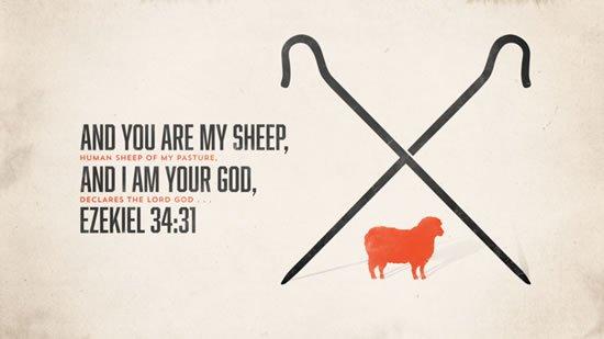 Ezekiel 34. 31