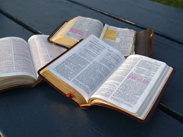 bible-study-600